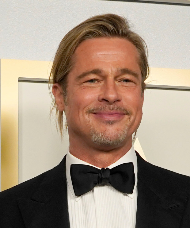 Superstar Actor Brad Pitt Wins Equal Custody Of His 6 Children, Yet The Feminist Media Paint It As A Loss For Parental Alienator Angelina Jolie (Because Feminism Is Not About Equality, It's About Female Supremacy)